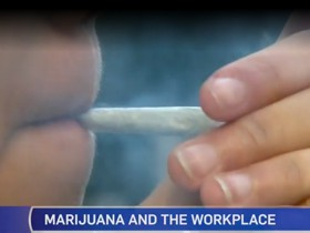 Marijuana and the Workplace